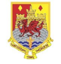 Carmarthen Quins : Official Website
