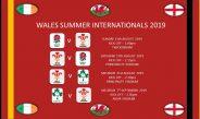 WALES SUMMER AWAY INTERNATIONALS