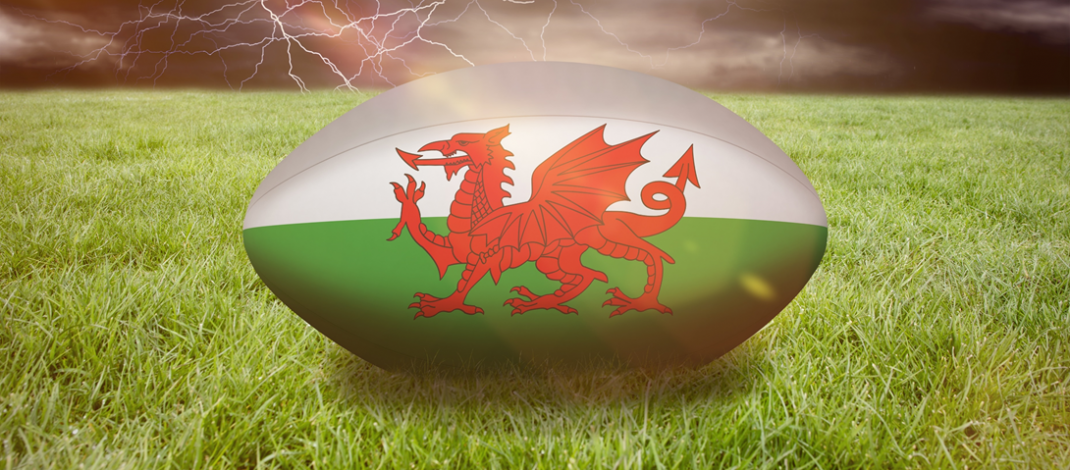 Keep up to date with the Rugby World Cup Here